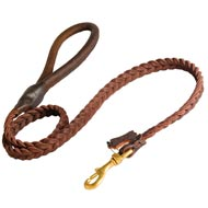 Newfoundland Leather Braided Dog Leash