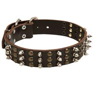 Newfoundland Spikes and Studs Rows Leather Dog Collar