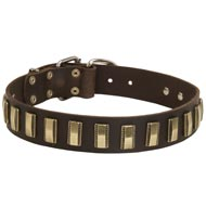 Leather Newfoundland Collar with Awesome Brass Plates