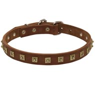 Handcrafted 1 Row Square Studded Leather Newfoundland Collar
