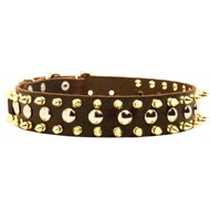 Spiked and Studded Newfoundland Leather Collar