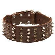 Extra Wide Leather Spiked and Studded Newfoundland Collar