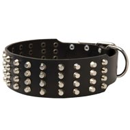 Extra Wide 4 Rows Studded Leather Newfoundland Collar