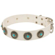 Exclusive White Leather Newfoundland Collar with blue stones