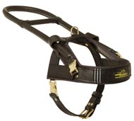 Guide and Assistance Leather Newfoundland Harness