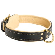 Padded Leather Newfoundland Collar
