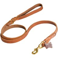 Walking and Training Leather Newfoundland Leash with Comfy Handle