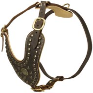 Royal Design Leather Newfoundland Harness with Brass Studs