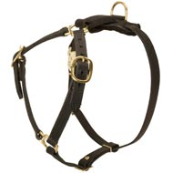 Y-Shaped Leather Newfoundland Harness for Tracking and Training