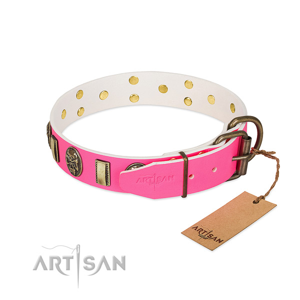 Durable studs on full grain genuine leather dog collar for your doggie