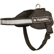 Nylon Newfoundland Harness with Reflective Strap for Training, Walking, Police Service, SAR and More