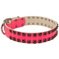Fashionable Pink Leather Newfoundland Collar with Studs for Walking She-Dogs