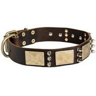 Designer War-Style Leather Newfoundland Collar with Spikes and Plates