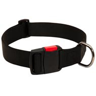 Any-Weather Nylon Newfoundland Collar With Quick Release Buckle for Training and Walking
