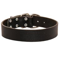 Wide Leather Newfoundland Collar for Training and Walking