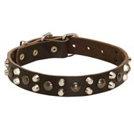 Leather Newfoundland Collar With Studs and Pyramids