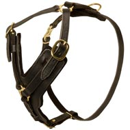 Padded Leather Newfoundland Harness for Agitation Training