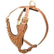 Brass Spiked Leather Newfoundland Harness for Fashion Walking
