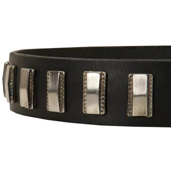 Stylish Leather Collar with Vintage Plates for Newfoundland