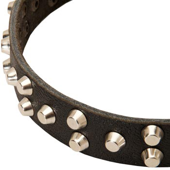 Leather Newfoundland Collar Durable Stud Decorated