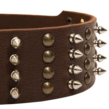 Newfoundland Leather Collar with Rust-proof Fittings