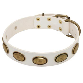 White Leather Newfoundland Collar with Vintage Oval Plates