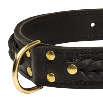 Newfoundland Wide Leather Collar with D-ring