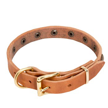 Newfoundland Leather Collar with Studs