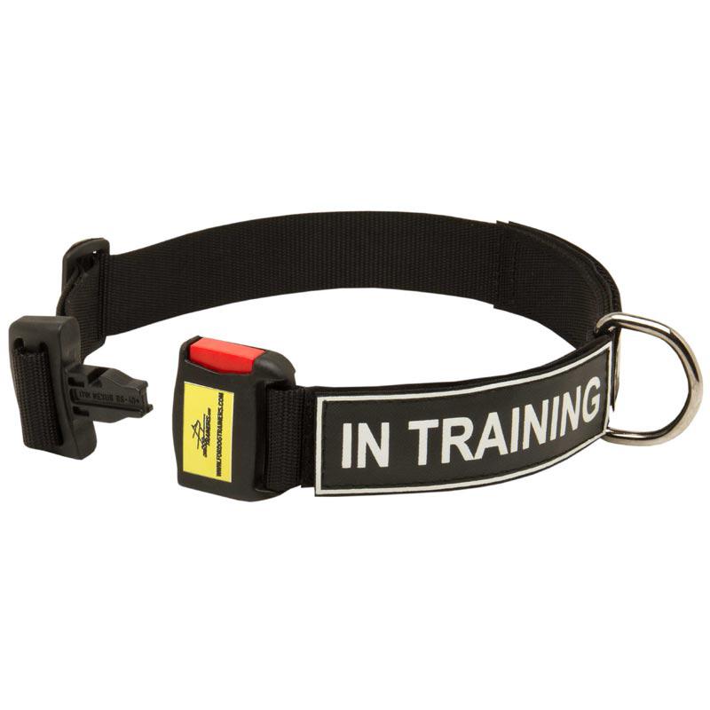 Quick Release Dog Training Collar