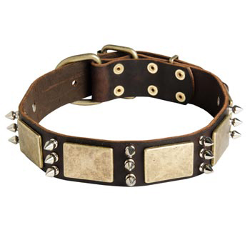 War-Style Leather Dog Collar for Newfoundland