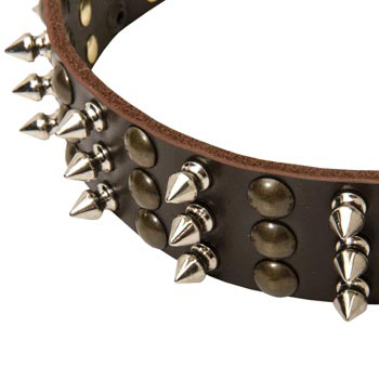 3 Rows of Spikes and Studs Decorative Newfoundland  Leather Collar