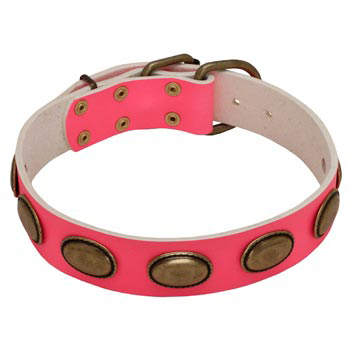 Pink Leather Newfoundland Collar for Female Dogs