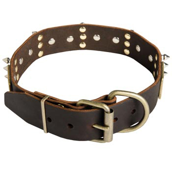 Spiked Leather Newfoundland Collar