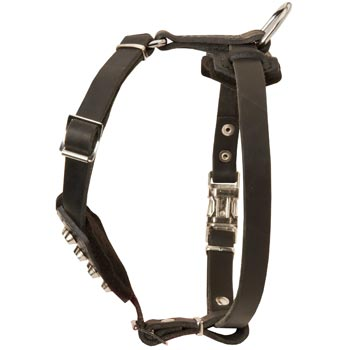 Leather Newfoundland Puppy Harness for Comfy Walking