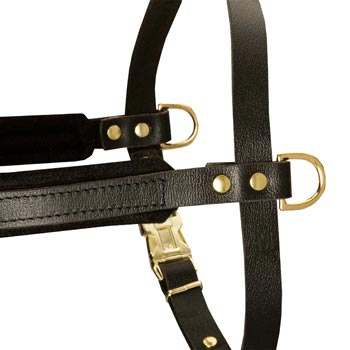 Training Pulling Newfoundland Harness with Sewn-In Side D-Rings