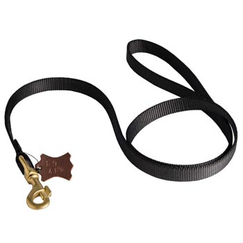 Walking Newfoundland Leash