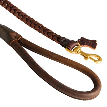 Braided Leather Newfoundland Leash with Brass Snap Hook