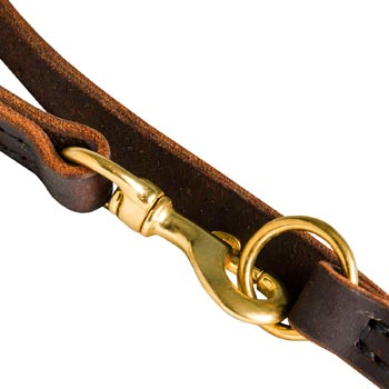 Newfoundland Leather Leash with Brass Snap Hook and O-ring