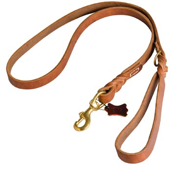 Canine Leather Leash for Newfoundland