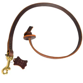Brown Leather Dog Leash for Training