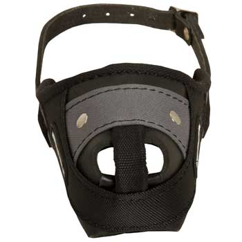 Nylon and Leather Newfoundland Muzzle with Steel Bar for Protection Training