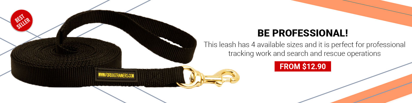 Nylon Newfoundland Leash for Tracking and Training